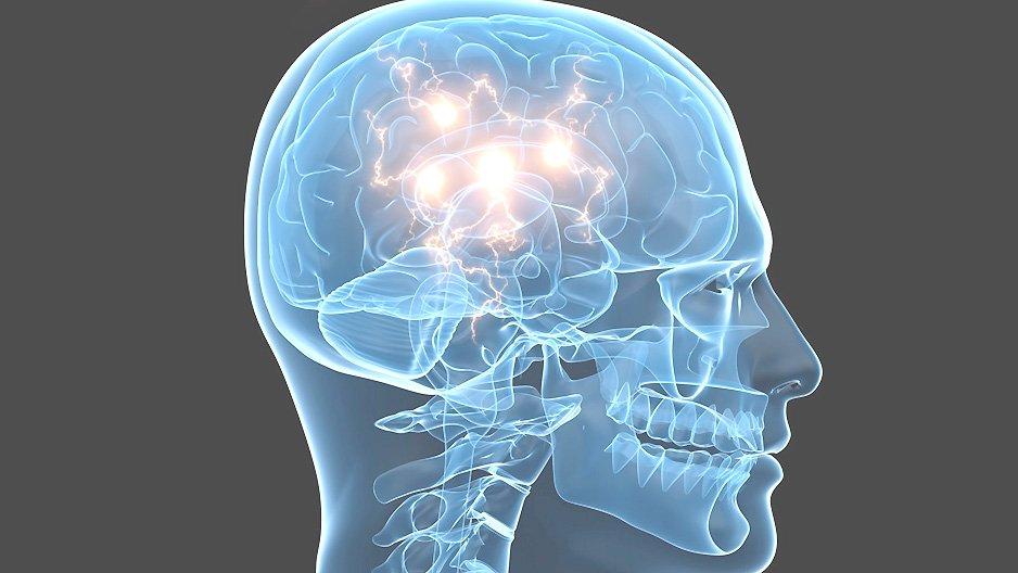 centre tête, centre coeur, centre ventre psychologie